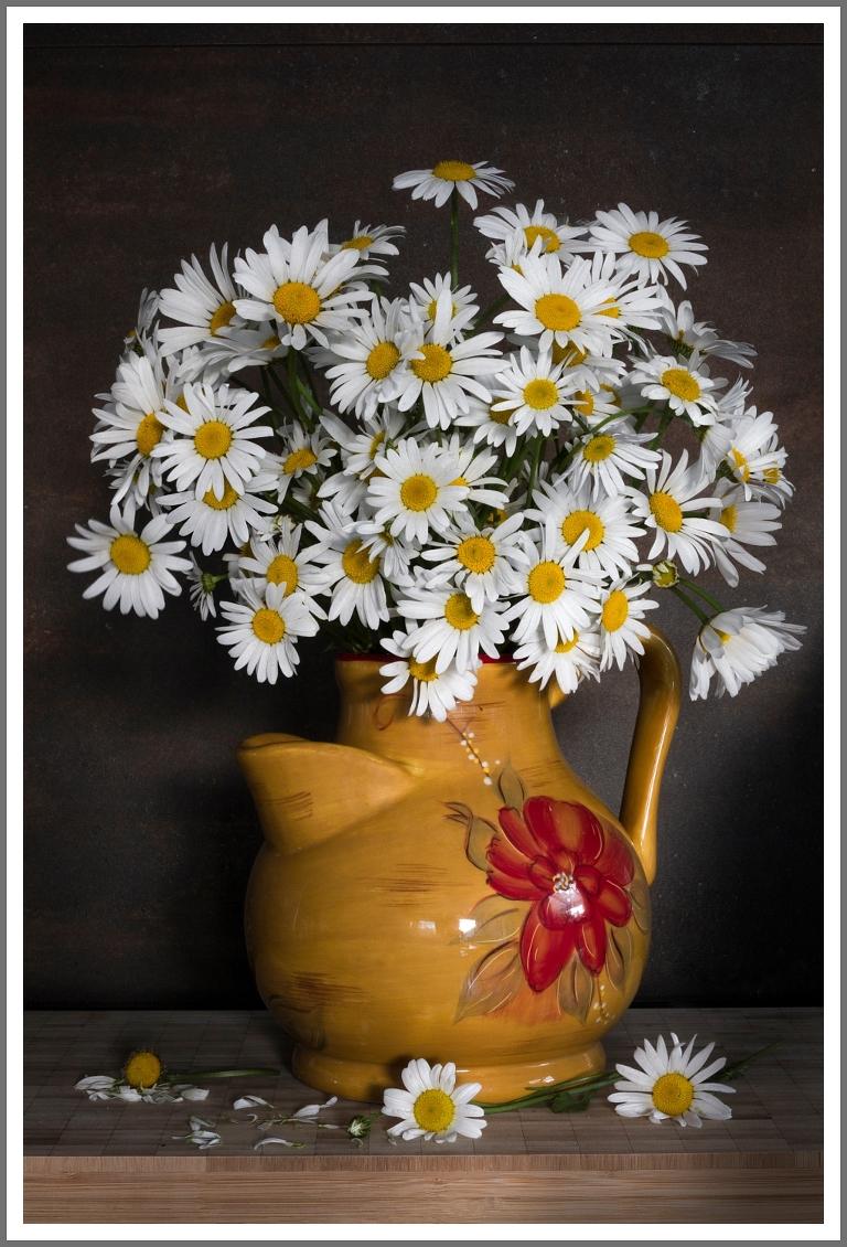 daisies in a jug