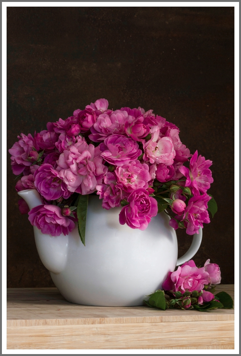 pink roses in a teapot